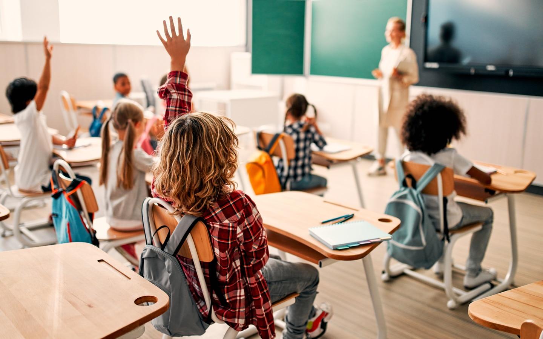 students raising hands at school